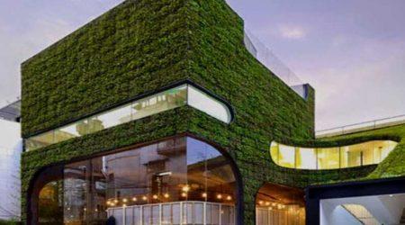 jasa arsitek rumah green building